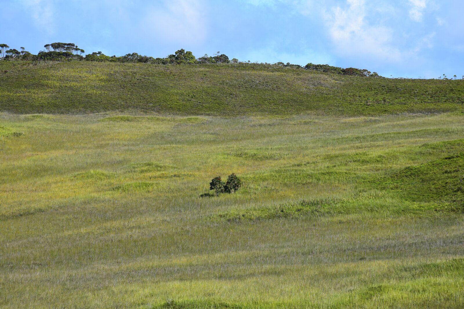 Randonnée sur le plateau de Dogny