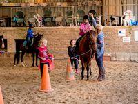 Stage initiation à l'équitation Comines 24-28/07/2017