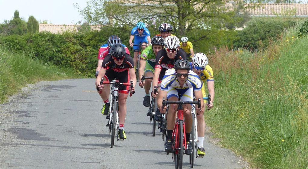Agenda : Sortie Club Estuaire / BRM 200 km / Course de Ste Croix-du-Mont