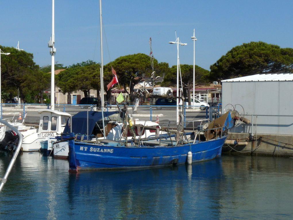 SUZANNE , MT 269648 , dans le port de Saint Gervais à Fos sur Mer le 08 juin 2016