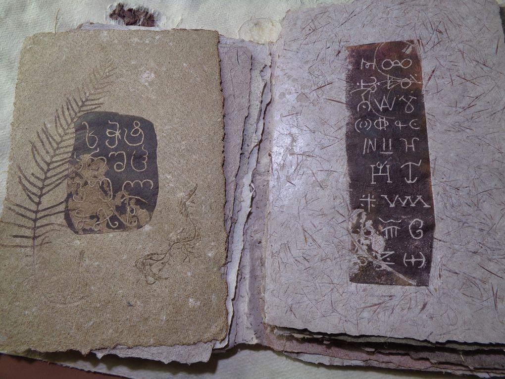 Ecritures et végétale , dans le temps et l'espace