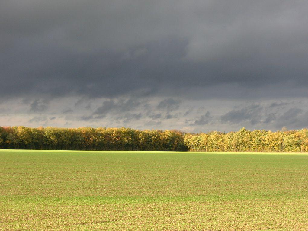 Bel automne en Essonnes.
