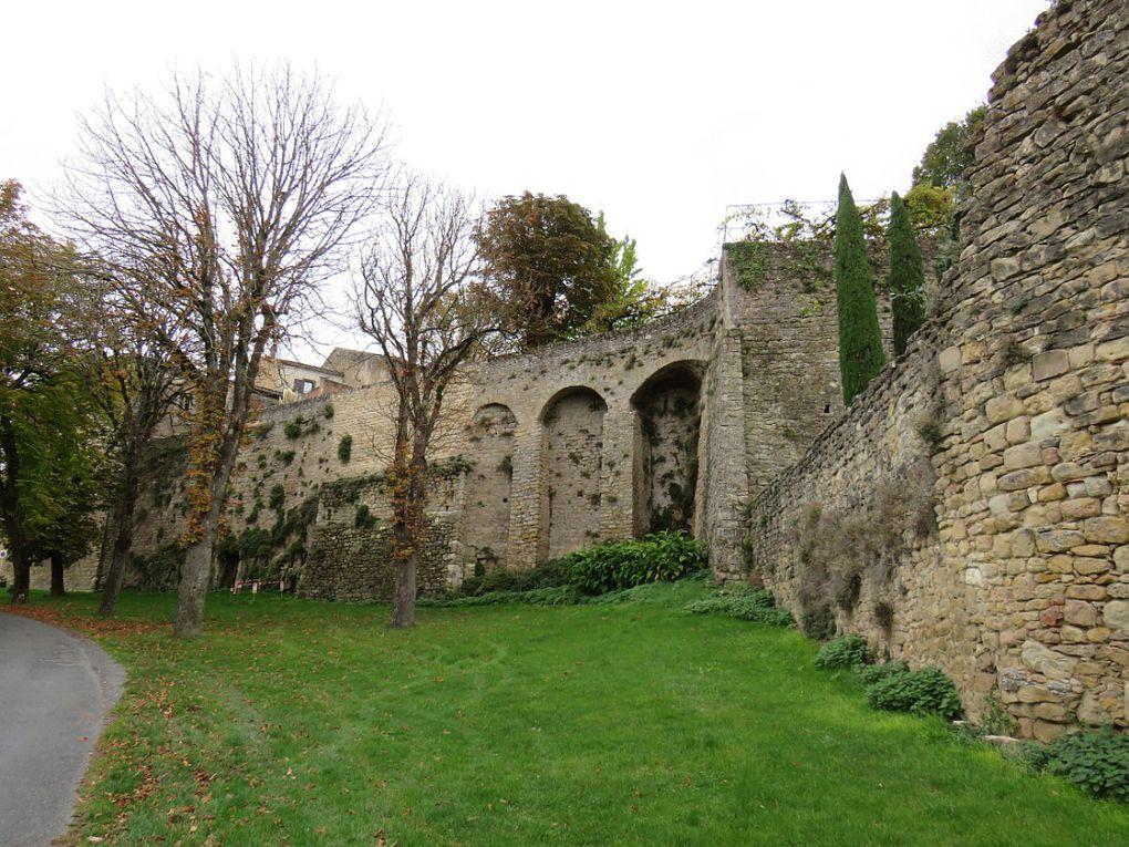 """""""Un des plus beaux villages de France"""" du Tarn. Cité médiévale"""