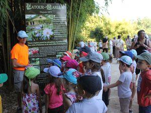 Jardin des nénuphars