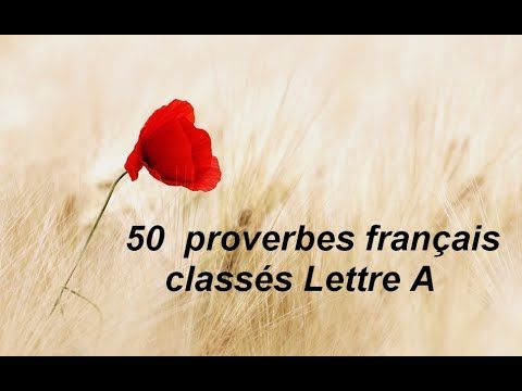 Proverbes...