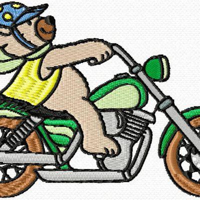 ourson fou de moto