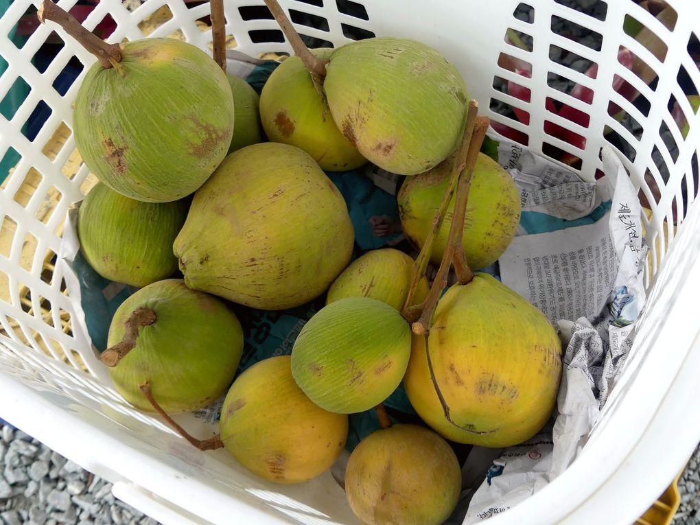 Fruits de saison (21-10)