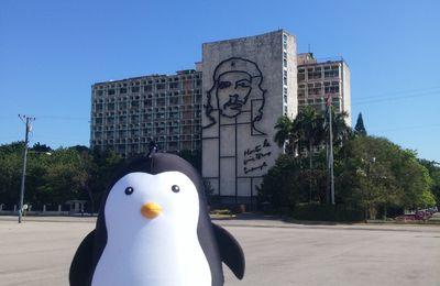 Le Pingouin à La Havane !!