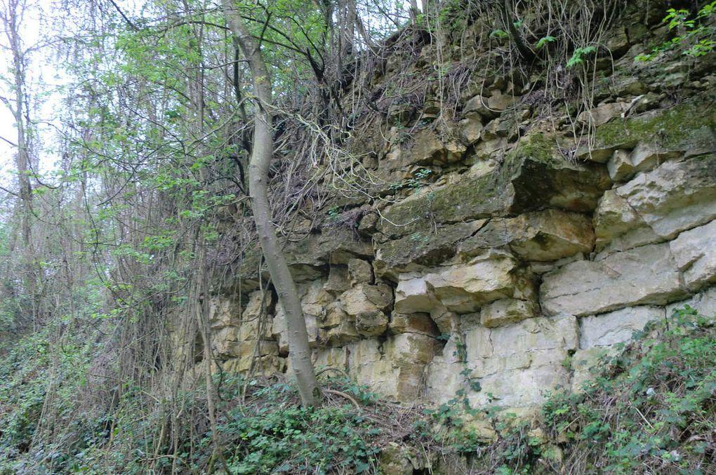 suivit d'une autre particularité géologique, la carrière de calcaire oolithique.