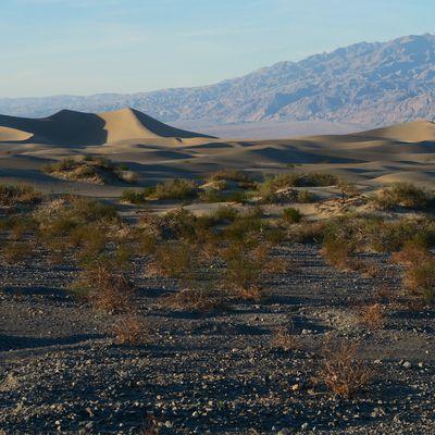 Road Trip USA : Las Vegas et la Death Valley
