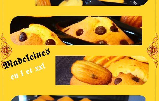 Madeleines LIMONCELLO en L et XXL au robot i-cook'in