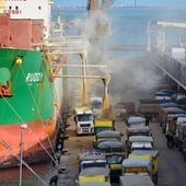 L'Algérie a-t-elle acheté du blé français contaminé refusé par l'Egypte ?