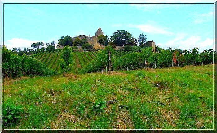 Diaporama château de BENAUGE à Arbis