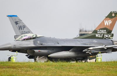"""General Dynamics F-16CM """"Fighting Falcon"""" Block 40 - 8th Fighter Wing (8 FW) - 35th Fighter Squadron (35 FS) """"Pantons"""" - Honor Colonel Robin Olds"""
