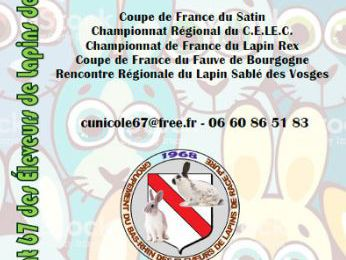 Coupe de France 2019/20 - Illkirch (67)