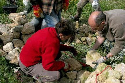 Stage muret de pierre sèche (information partagée)
