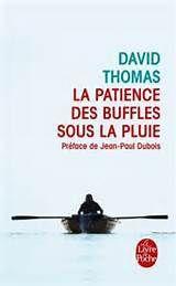 La patience des buffles sous la pluie de David THOMAS