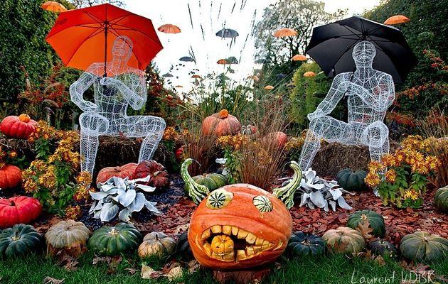 Scénographie d'automne au jardin des plantes de Rouen