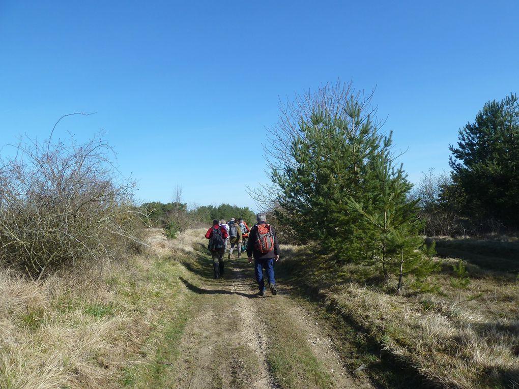 Randonnée de Maisse à La Ferté-Alais, 19 km.