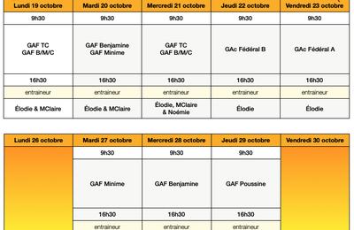Stages Vacances - Groupes Compétition GAF & GAc