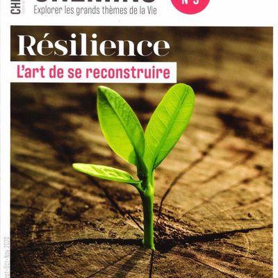 Article paru dans la revue CHEMINS sur le thème de la Résilience