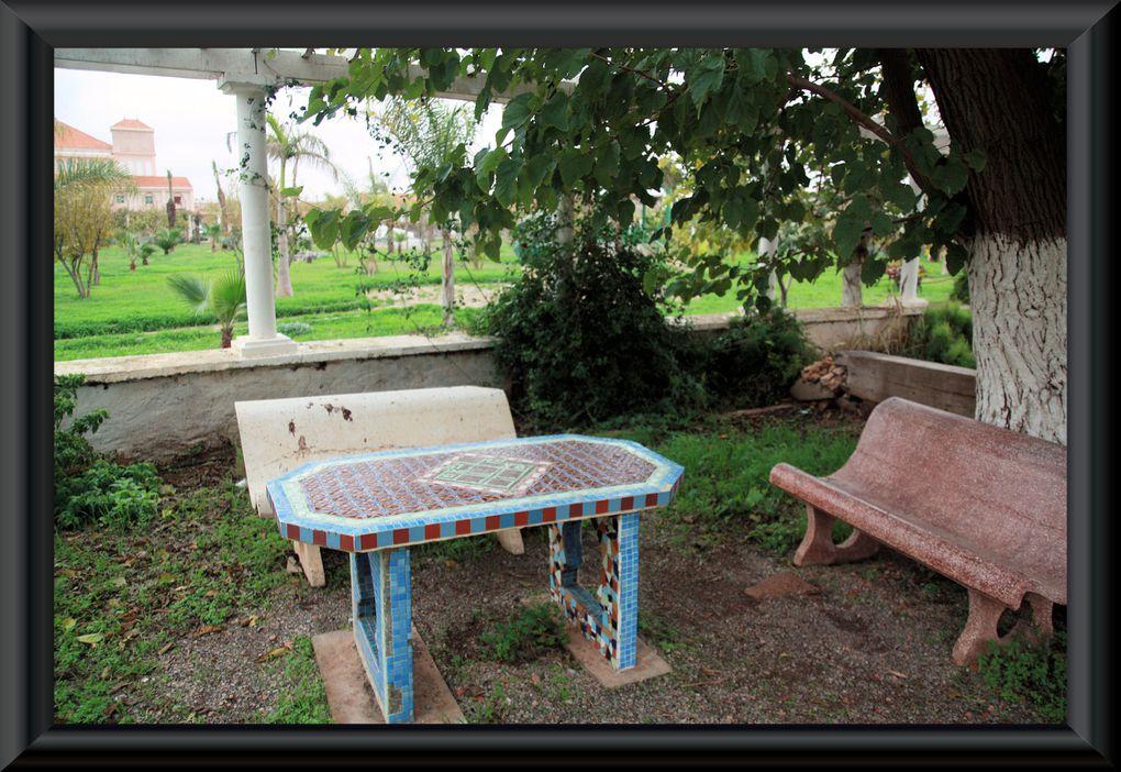 Ces photos ont été prises lors de mon séjour au Centre Méditerranéen pour le Développement Durable situé à la périphérie de Mostaganem...Si le soleil n'était pas au rdv, ce fut la lumière et la chaleur émanant du sourire de ses bénévol
