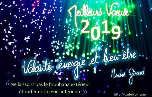 André Girard, administrateur du Blog DGI, vous adresse son message et ses bons Vœux pour 2019