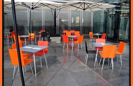 Arancio in terrazza