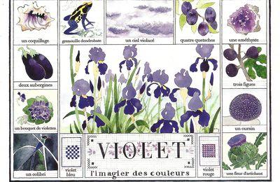 vous avez dit violet....tes ...de Toulouse....