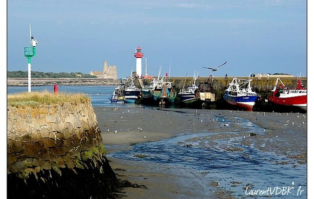 Le port de Saint Vaast la Hougue (1/2)