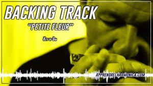 Vignette jaune : Backing track