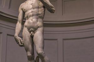 Statue : David, par Michel Ange.