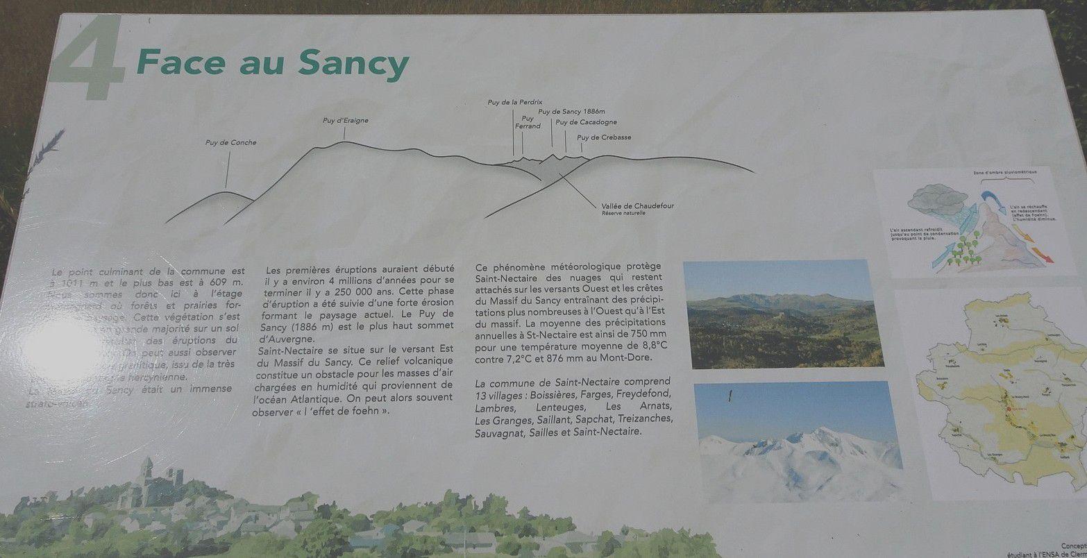 Rando'canard à Saint Nectaire. (30).