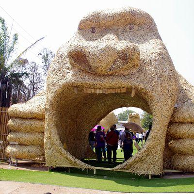 26 février 2021 : Nong Khai, un petit tour au festival du riz.