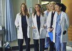 Le retour de Grey's Anatomy, en forte baisse, séduit surtout les ménagères