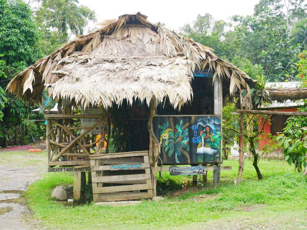 Près de la frontière du Panama, une haute vallée est remplie d'immenses bananeraies sur une trentaine de kilomètres.