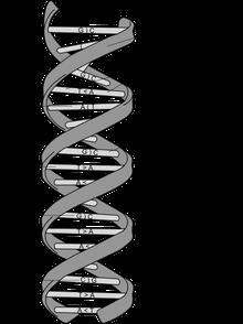 Structure sexagénaire (et plus si affinités)