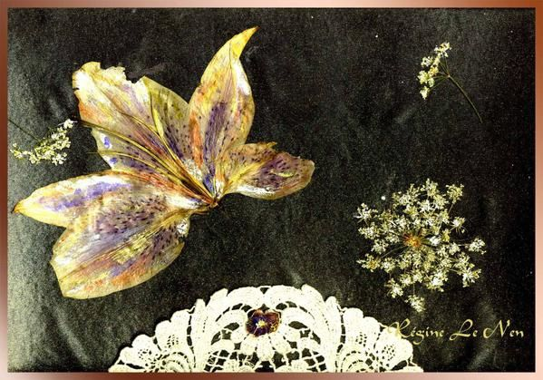 Tableaux - herbiers : Compositions de fleurs pressées format cartes postales, posters, calendriers ou autre support