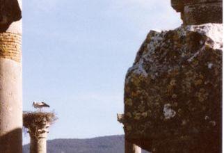 Le Maroc ..romain : Volubilis