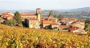 #Morgon Producers Beaujolais Region France