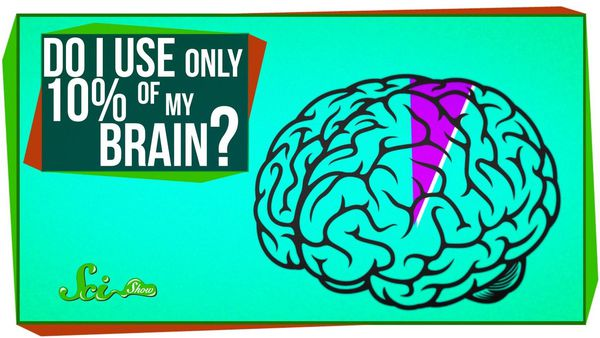 We debunks the myth that you only use 10 percent of your brain