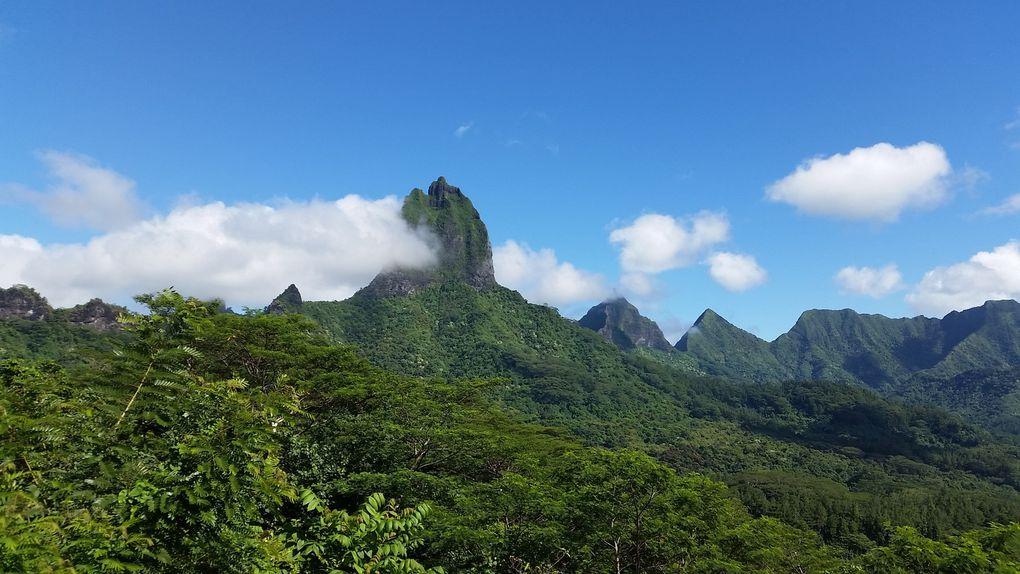 Moorea en famille ~Polynesie Française