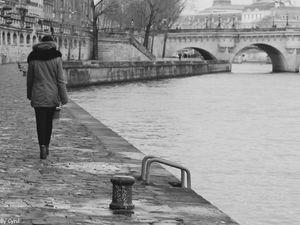 Hiver aux bords de Seine
