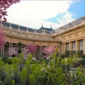 Le petit jardin du Petit Palais - Images du Beau du Monde