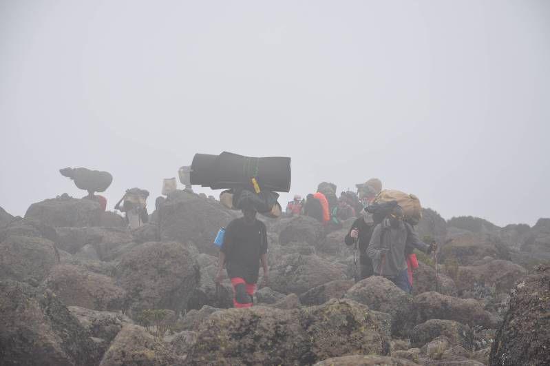 Kilimandjaro, Lava Tower
