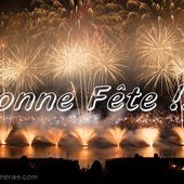 Bonne Année à tous... - DEFENSES TACTIQUES