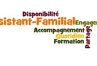 CONDITIONS DE TRAVAIL DES ASSISTANTS FAMILIAUX