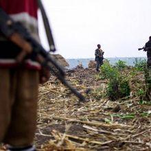 RDC : dix morts dans des affrontements entre les FARDC et des groupes armés (Ituri)