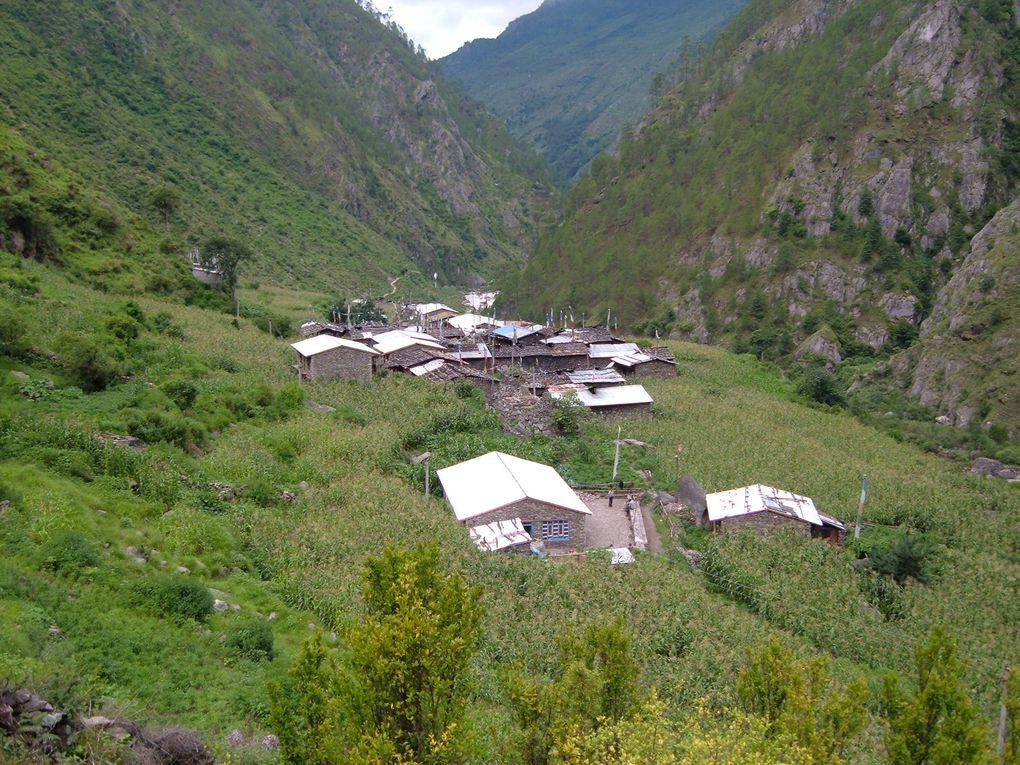 Photos of Timure
