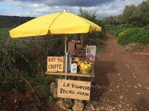 COMPOSTELLE 2018: JOUR 5 :  PUENTA LA REINA-VILLAMAYOR DE MONTJARDIN(32 kms)